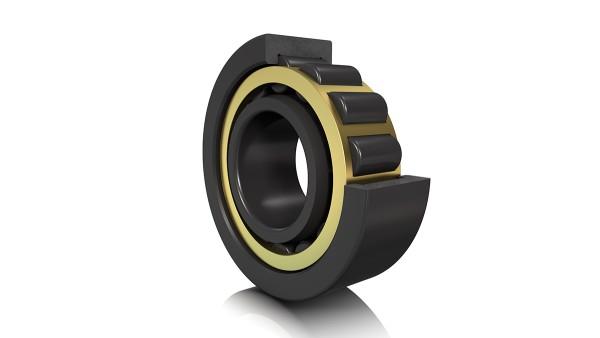 FAG cylindrical roller bearing