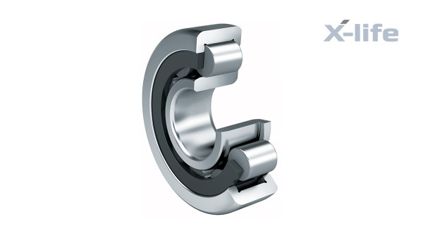 Schaeffler rulningslejer og glidelejer: Cylindriske rullelejer med rulleholder